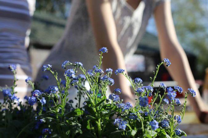 ogródek dla dziecka